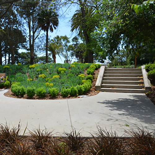 Concrete walkway with custom landscaping in Lafayette Park, Pacific Heights, San Francisco