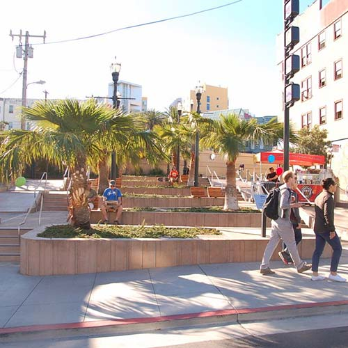 Commercial concrete planters with palm trees in McCoppin Hub Plaza